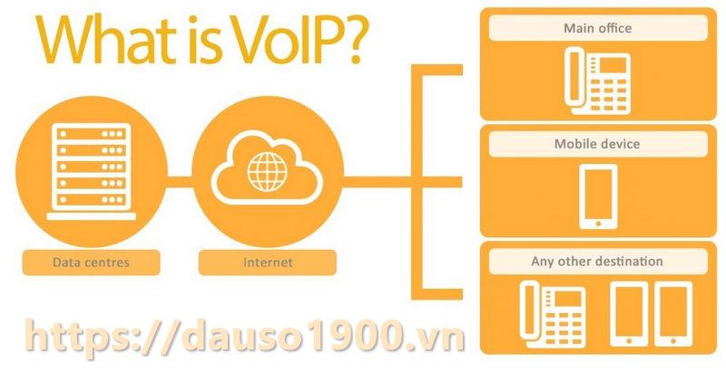 Các dịch vụ VoIP phổ biến là gì?