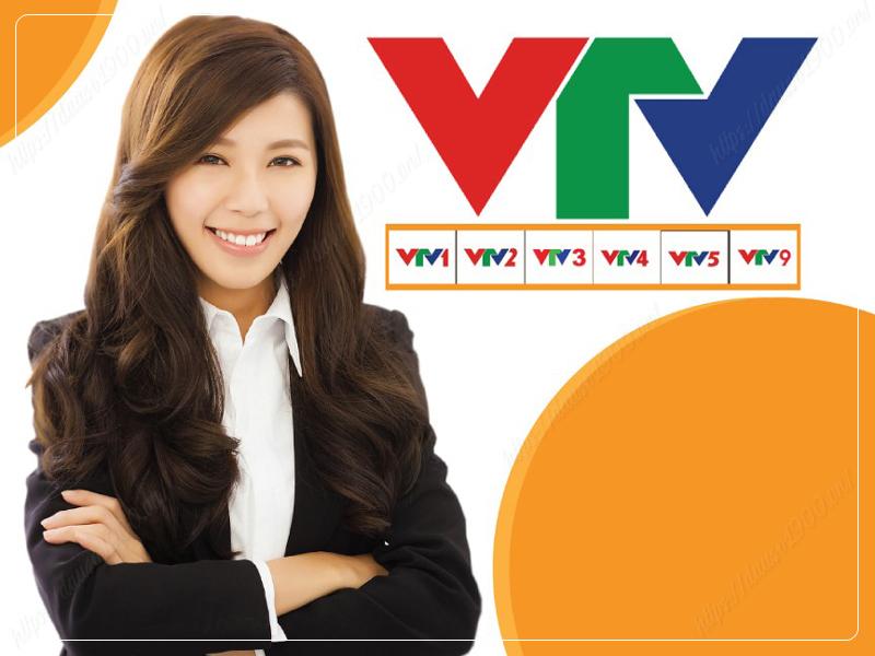 Thực Trạng Tiếp Nhận Thông Tin Của Đường Dây Nóng Ban Thời Sự, Đài Truyền Hình Việt Nam VTV